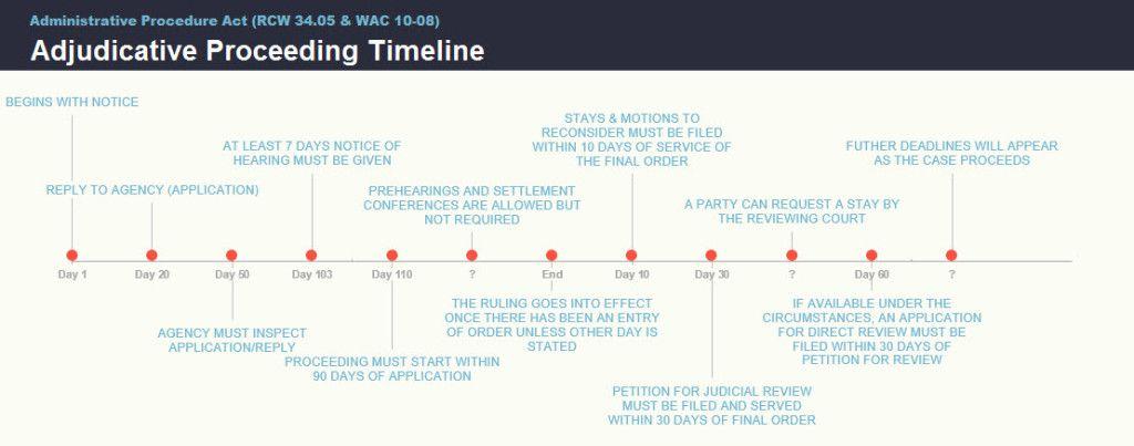 apa timeline